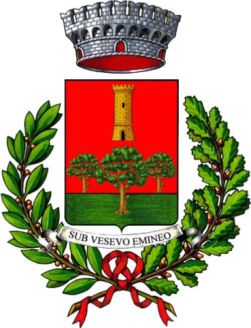 COMUNE DI TRECASE (NA)